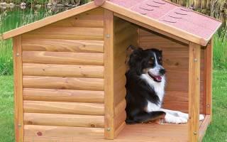 Как сбить будку для собаки?