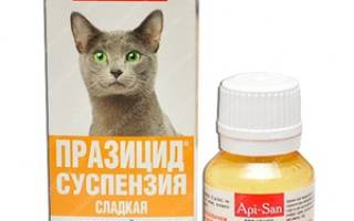 Празицид суспензия плюс для кошек как применять