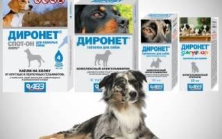 Диронет для собак инструкция цена