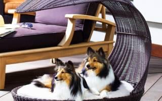 Чем покрасить будку для собаки?