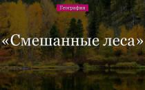 Смешанный лес животные и растения