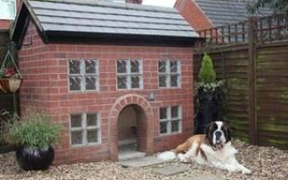 Из чего лучше сделать будку для собаки?