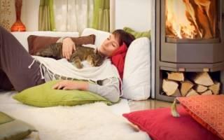 Почему коты любят спать на человеке – почему кошки ложатся на живот?