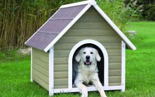 Как строить будку для собаки?