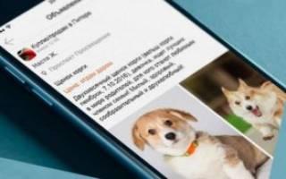 Как продать щенков в интернете?