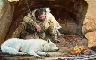 Кто является предком собаки?