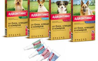 Адвантикс для собак инструкция отзывы