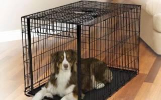 Как сделать самому клетку для собаки?