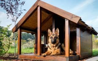 Какая должна быть будка для собаки?