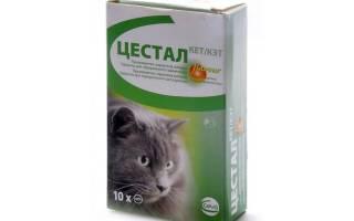 Цестал инструкция по применению для кошек, cestal cat