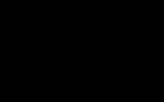Как отучить щенка подбирать с земли?