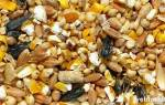 Кормовые добавки для птицы – биодобавки для кур несушек