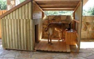 Как правильно сделать будку для собаки?