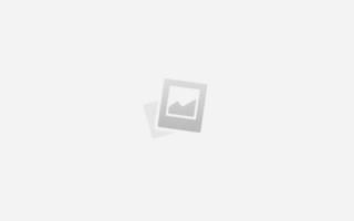 Как приручить щенка к лотку?